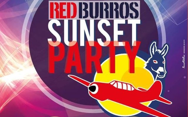 Red burros sunset party 17 1 640 400